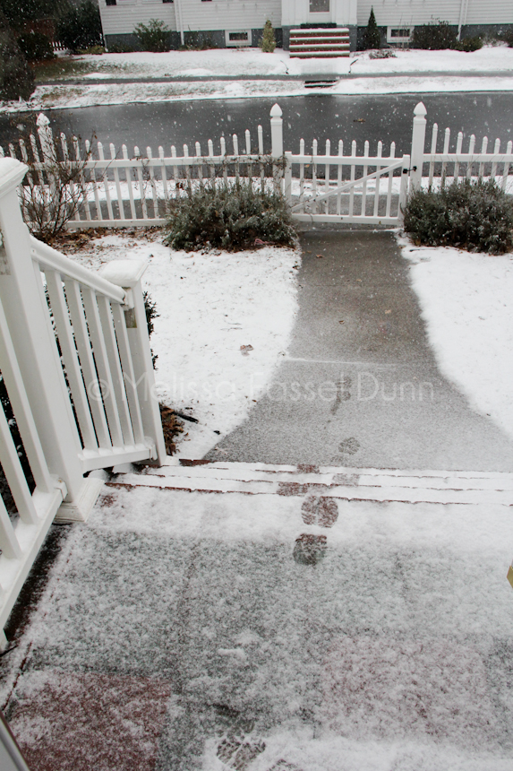 Blizzard front steps 1