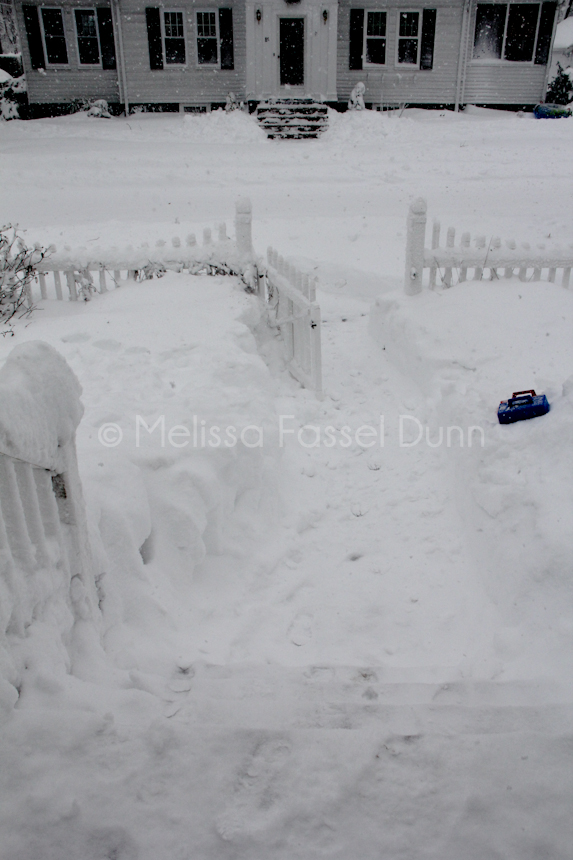 Blizzard Nemo 2013, Progression 6